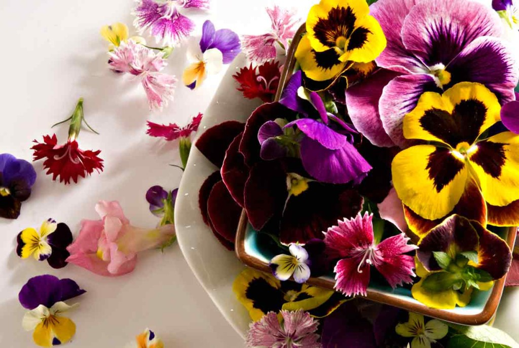 mixed-edible-flowers-chefs-garden